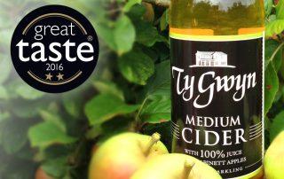 Ty Gwyn Medium Cider with Great Taste award