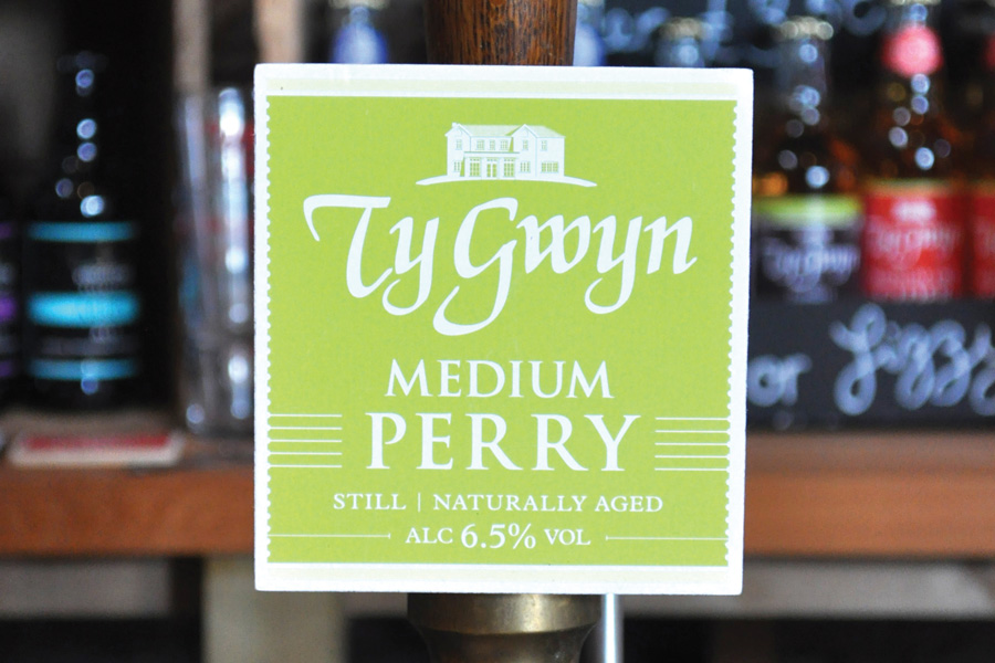 Ty Gwyn Cider's Medium Perry