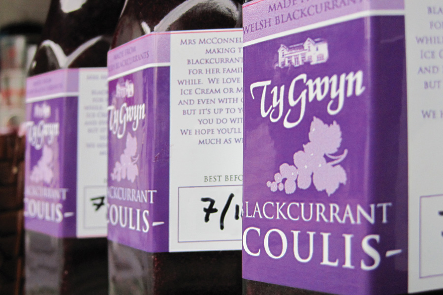 Ty Gwyn Blackcurrant Coulis