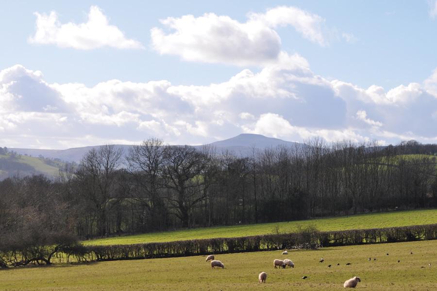 Pen-Y-Lan Farm, home of Ty Gwyn Cider