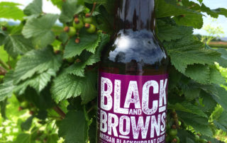 Ty Gwyn 'Black and Browns' blackcurrant cider