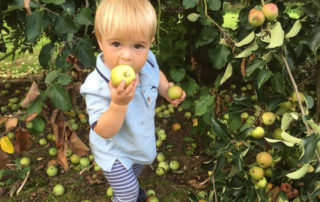 Apprentice cider maker