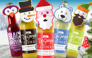 Ty Gwyn Ciders in the snow