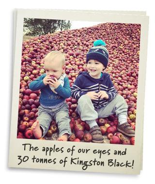 The boys and an apple mountain!