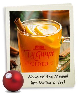Ty Gwyn Mulled Cider