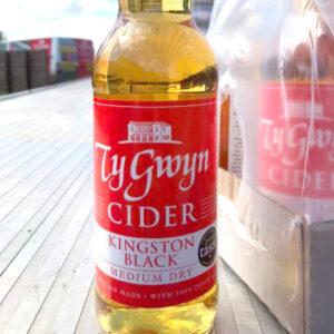 Ty Gwyn Medium Dry Cider